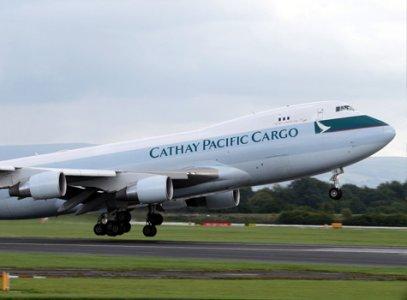 Cargo Activities Increase in Major Economic Hub of World